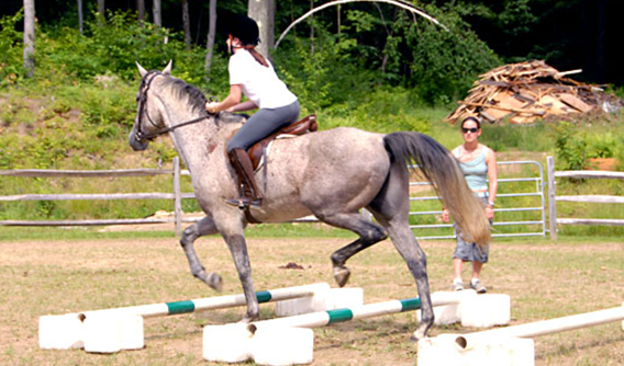 Summer Camps In The Berkshires, Camps In The Berkshires