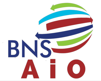 BNS AiO - BNS Worldwide SL