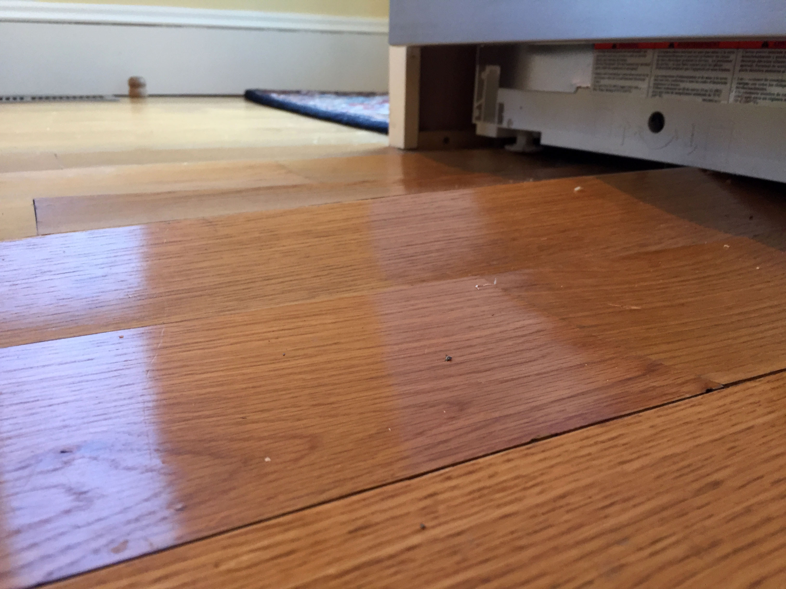 Water Damage hardwood Floors