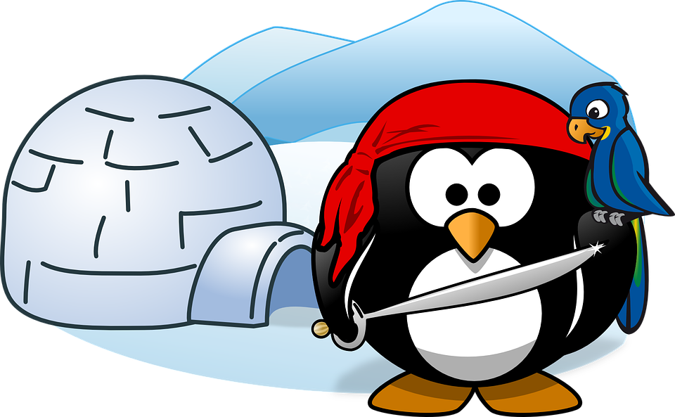 igloo and cold penguin