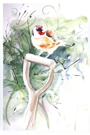 Goldfinch - Watercolour by Tania Jack
