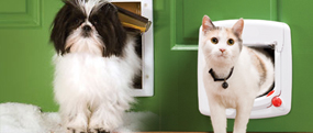 CAT / DOG FLAPS & LETTER BOXES