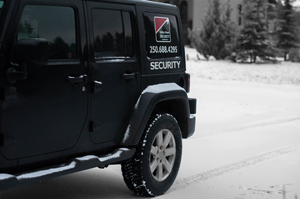 Day and night mobile security patrols