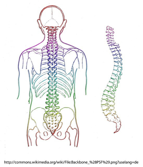 Florida Back Injury Lawyer | Spinal Cord Injuries
