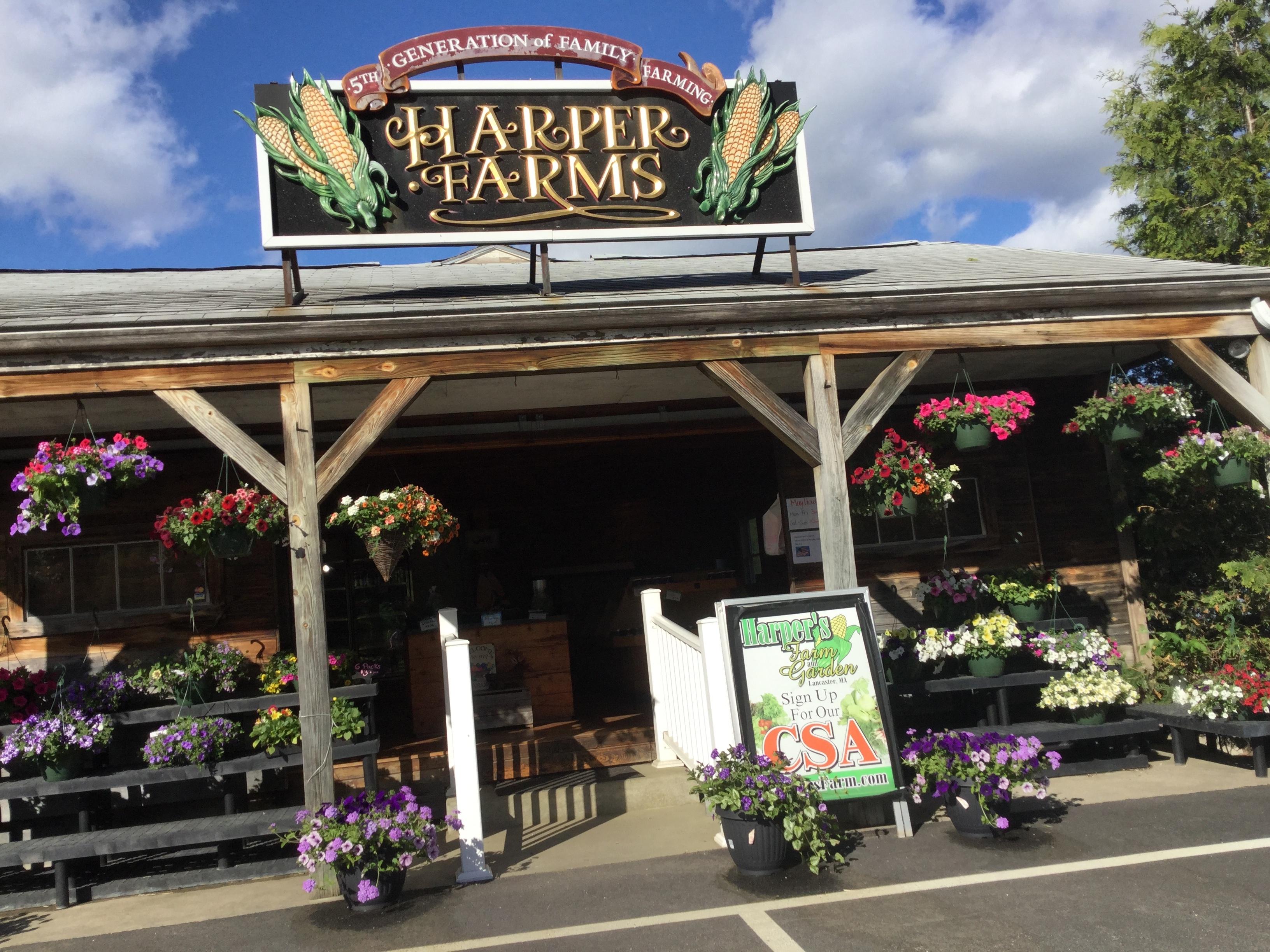 Harper S Farm Farm And Garden Csa Lancaster Ma