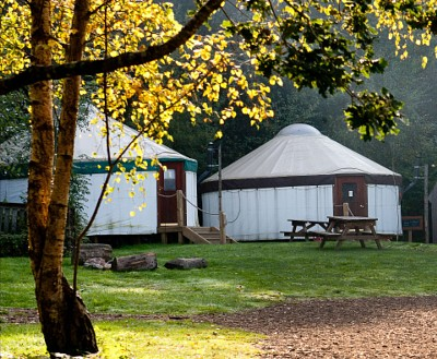 Stay at Yurtcamp Devon