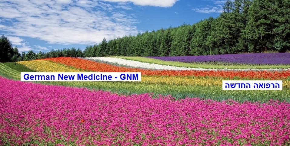 טיפ מס' 250: מבוא להכרת הרפואה החדשה