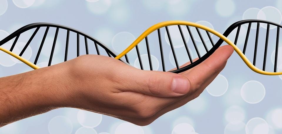 הביולוגיה החדשה