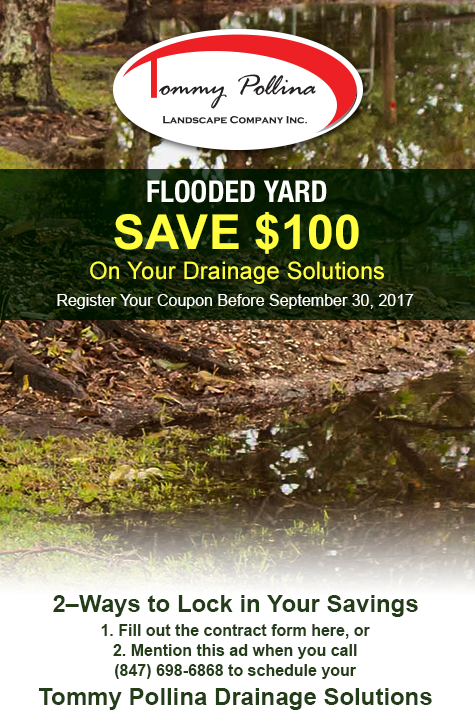 Tommy Pollina Drainage Solutions Coupon