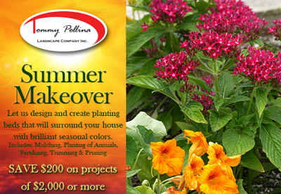 Summer makeover Coupon