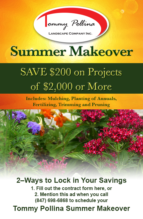 Tommy Pollina Ad Response Form for a Summer Makeover savings