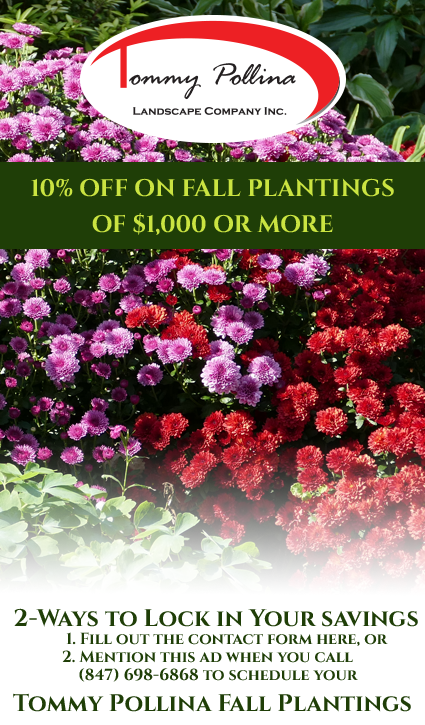 Tommy Pollina Landscape Fall Planting Coupon