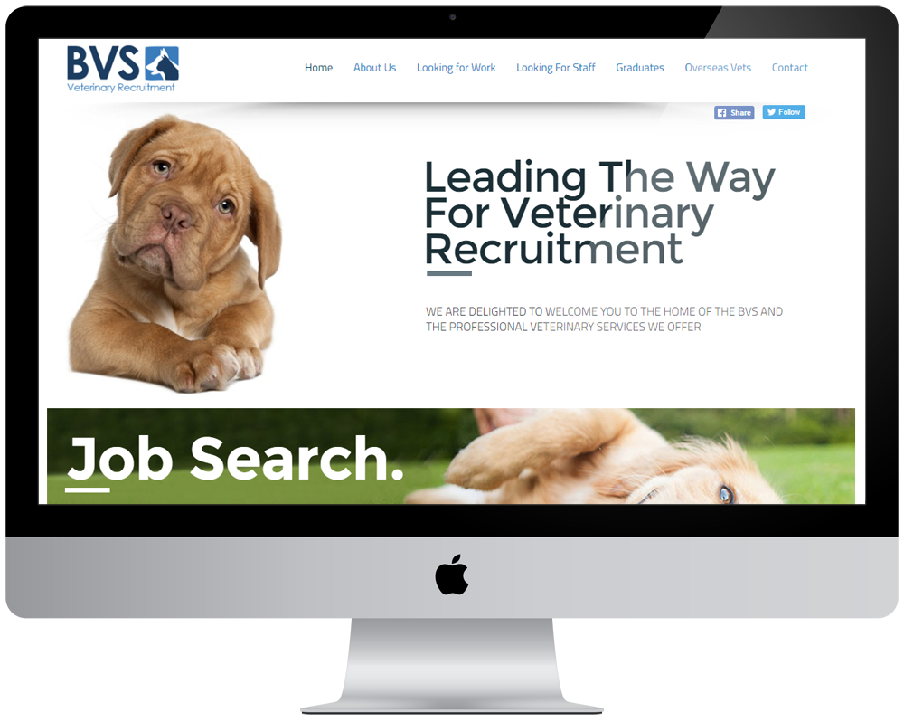 BVS Vets Responsive Website