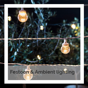 Festoon and ambient lighting | Godney Marquee Hire