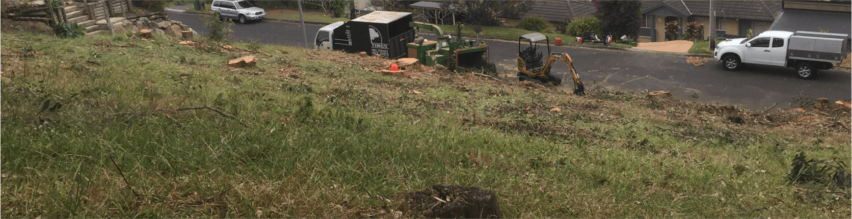 Land Clearing Hunter Valley | Ben Hastings Tree Service Call 0452 393 093