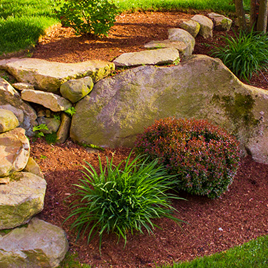 Multi level landscape with large  stone croppings, plants, and bright red color enhanced mulch.