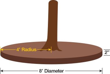 illustration of how to determine the radius of a circle under a tree